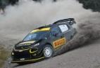 Image - FIA e Pirelli lançam